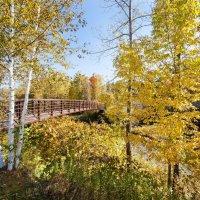 Осенний Вермонт :: Vadim Raskin
