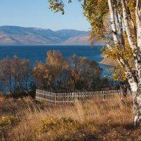 Байкальская осень :: Ольга Литвинцева