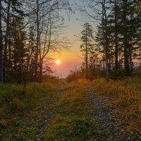 Дорога к солнцу :: vladimir