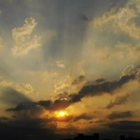 Солнце и чайка... или чт0-то итальянское... :: Валентина Колова
