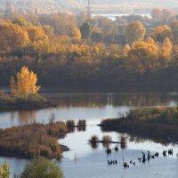 река Самарка :: Арсений Корицкий