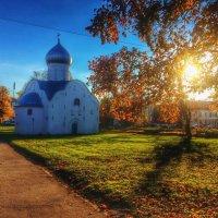 Золотая осень :: Olesya Inyushina