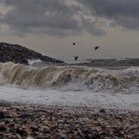 бурное море 1 :: Ingwar