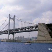 Diamond Bridge :: Владимир Плужников