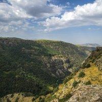 Каньон горной реки в заповеднике :: Дмитрий Потапкин