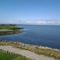 Берег Финского залива. :: Жанна Викторовна