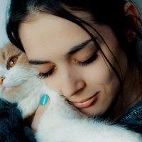 Проявление любви к кошкам :: Сергей Бородулин