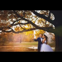 Свадебное фото 2014 :: Maria Alieva