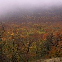 В Крым пришла осень :: Михаил Баевский