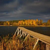 В глубокую осень... :: Roman Lunin