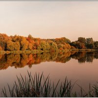 Осенний пруд. :: Владимир Елкин