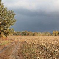 Погода меняется :: Эркин Ташматов