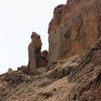 Жена Лота  горе Содом в Израиле. :: vasya-starik Старик