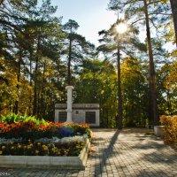 В городском осеннем парке. :: Виктор Евстратов