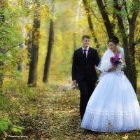 Свадебная осень :: Sergey Tymkov