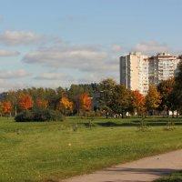 разноцветный осенний парк :: Татьяна