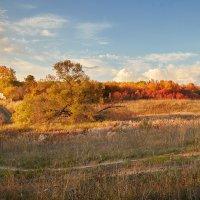 Осень в деревне :: Игорь Терехин