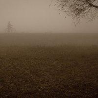 Человек в тумане) :: Екатерина Агаева