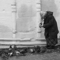 голубка :: Natalia Mihailova