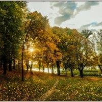 Autumn :: Владимир ...