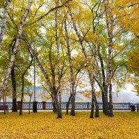 Городской парк Кемерово :: Павел Сухоребриков