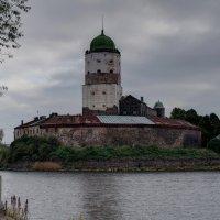 Выборгский замок. :: Юка Волнистая