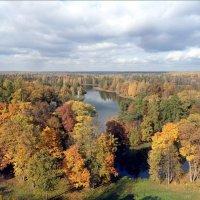 Гатчинская осень... :: Валерия Яскович
