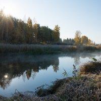 Утро :: Игорь Учаров