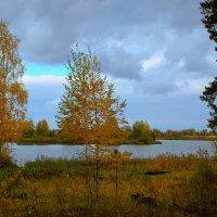 осень :: Владимир Зеленцов