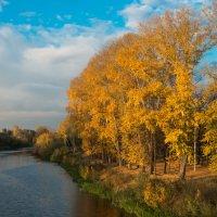 Золотая осень :: Сергей Канашин