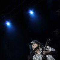 Концерты и Выставки. :: Сергей Гончаров