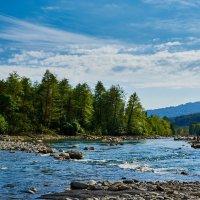Река Сочи :: Михаил Бабаков