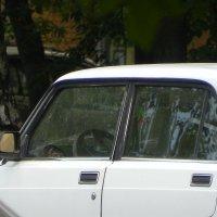 Привидение в машине. :: Oleg4618 Шутченко