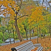 Присела осень на скамейку..... :: Tatiana Markova