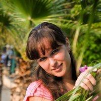 Пальмы, солнце :: Oleg Puhaev