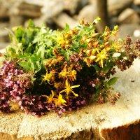 Ароматные травы :: Анна Агеева