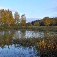 Осенний берег :: Андрей Куприянов