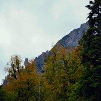 Вид на горы с озера Рица :: Владимир Болдырев
