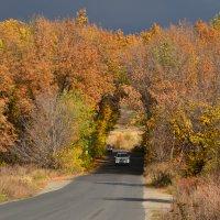 Яркие краски осени :: Александр Яценко