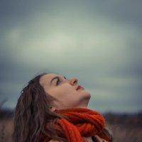Осеннее небо :: Александра Сучкова
