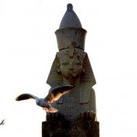 А птицы летят.. :: Галина (Stela) Кожемяченко