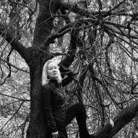Осень -она бывает и такой.. :: Лариса Захарова