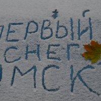 В Омске первый снег :: Savayr