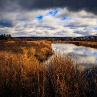 Река Пышма :: Андрей Афонасьев