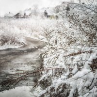 Зима подкралась незаметно... :: Светлана Лиханова