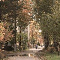 Осень в городе :: Александр mister.arm