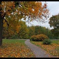 Осенний этюд... :: Nikanor