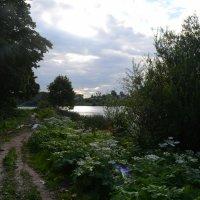 У озера :: Константин Рудинский