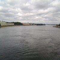 Взгляд с Володарского моста. :: Жанна Викторовна