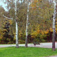 Осень краски рассыпает :: Людмила